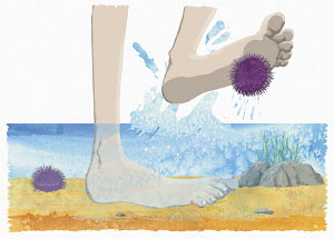 Feet paddling in sea and standing on sea urchin
