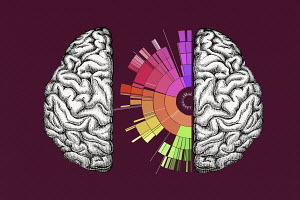 Multi coloured spectrum inside of brain