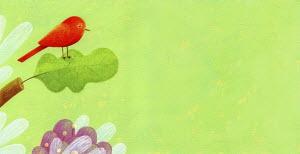 Red bird on oak leaf