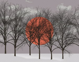 Large orange sun behind bare winter trees