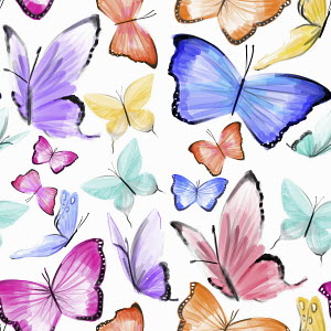 Lots of butterflies