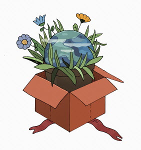 Planet earth pot plant in gift box