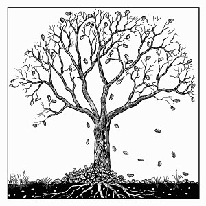 Black and white drawing of tree in autumn
