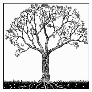 Black and white drawing of tree in spring