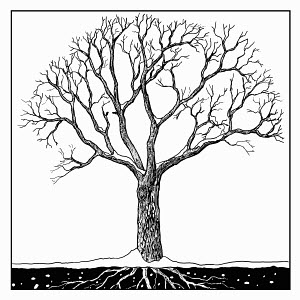 Black and white drawing of tree in winter