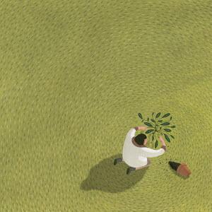 Woman planting single plant