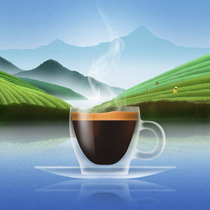 Glass of espresso coffee in plantation landscape