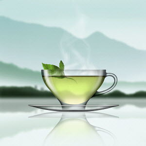 Glass of mint tea in tranquil landscape