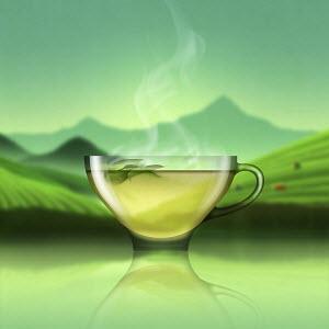 Glass of green tea in tea plantation landscape