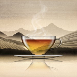 Glass of Chinese black tea in tea plantation landscape