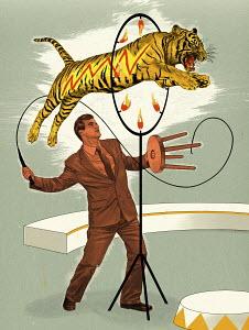 Tiger jumping through hoop for businessman lion tamer