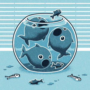 Large fish evicting small fish from goldfish bowl
