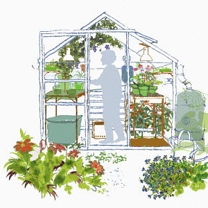 Elderly woman in garden greenhouse