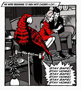 Couple irritated by parrot repeating Stay Home Stay Safe