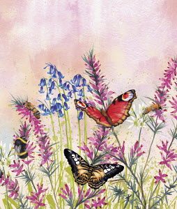 Bees and butterflies in spring meadow
