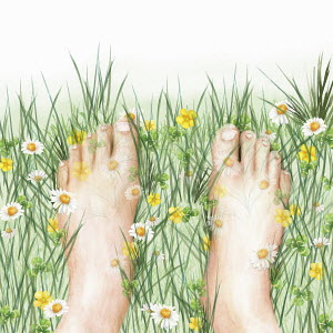 Close up of bare feet in wild meadow