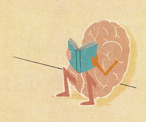 Human brain sitting reading