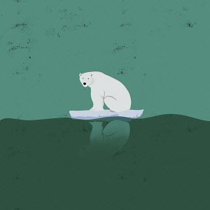 Polar bear sitting on tiny iceberg