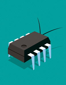 Microchip as computer bug