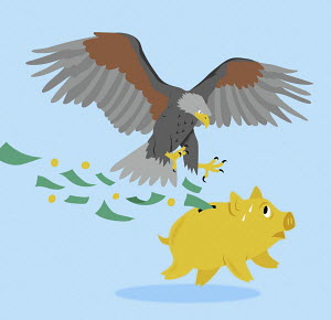 Bald eagle attacking piggy bank