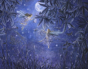 Fairies in garden at night