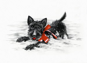 Cute black puppy with red bow