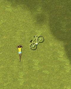 Overhead view of girl sunbathing on grass beside bicycle