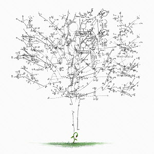 Mathematical calculations forming tree