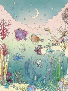Pretty sea creatures underwater