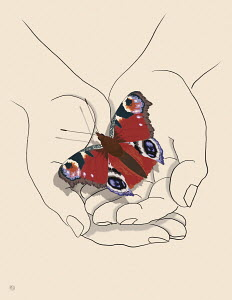 Butterfly in cupped hands