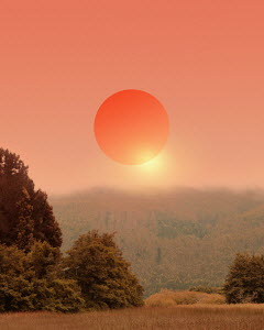Orange sun in mist above forest