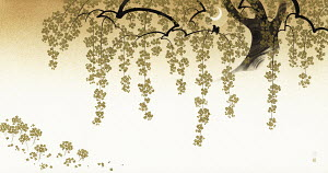 Sepia Japanese cherry blossom tree