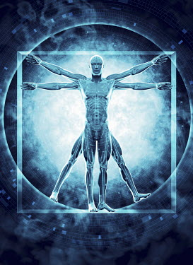 Futuristic transparent Vitruvian Man with brain, skeleton and DNA coding