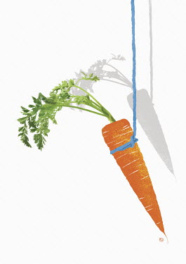 Carrot dangling on string