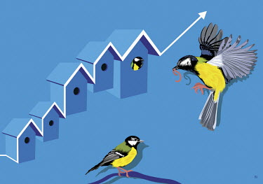 Great tit feeding family in rising birdhouse graph