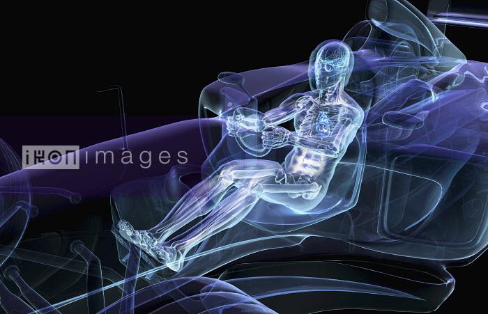 Anatomical man driving car - Anatomical man driving car - Oliver Burston