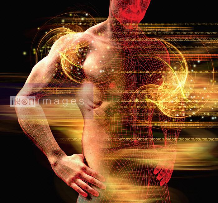 Man�s muscular torso - Man�s muscular torso - Oliver Burston
