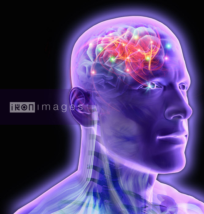Transparent man�s brain glowing and sparkling - Transparent man�s brain glowing and sparkling - Oliver Burston