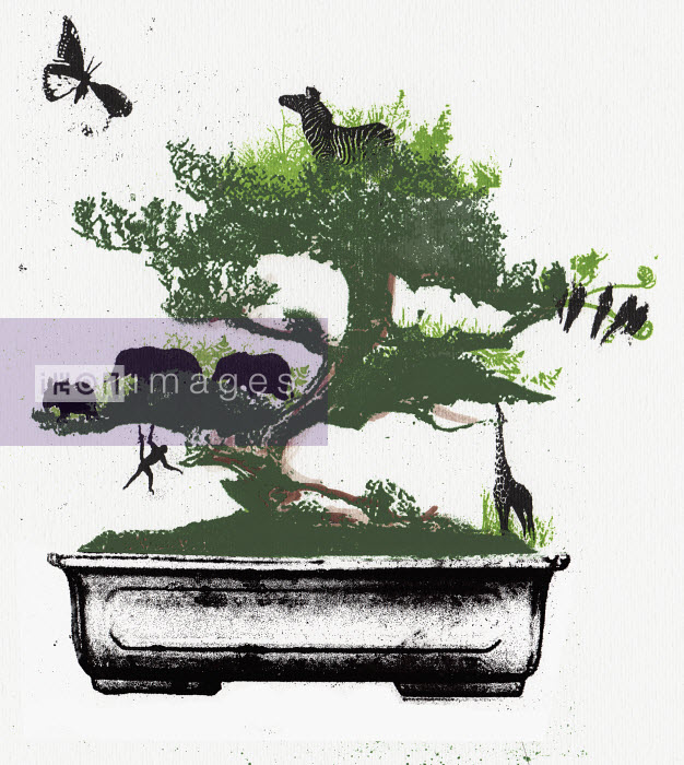 Assorted animals in bonsai tree - Assorted animals in bonsai tree - Katie Edwards