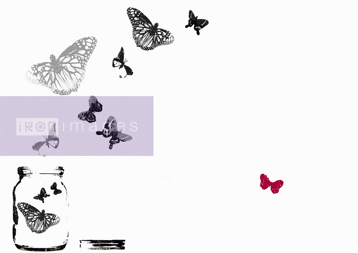 Red butterfly standing out from black and white butterflies escaping from jar - Red butterfly standing out from black and white butterflies escaping from jar - Katie Edwards