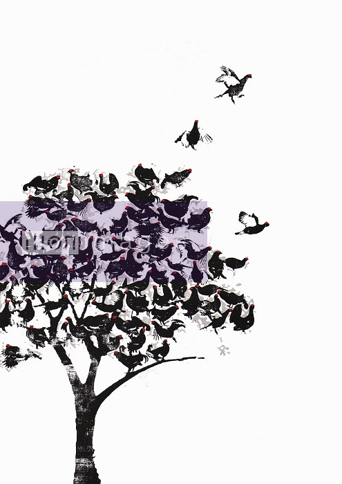 Flock of birds perched in tree - Flock of birds perched in tree - Katie Edwards