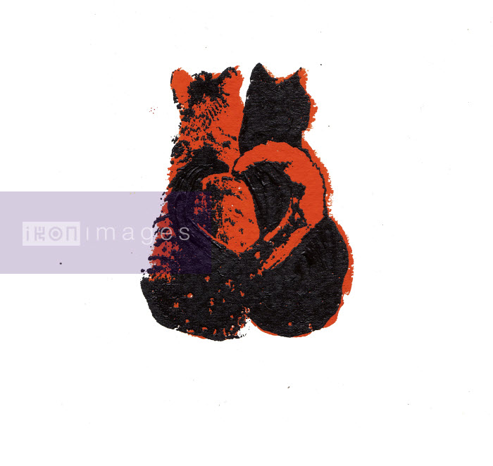 Two cats side by side with tails forming heart shape - Katie Edwards