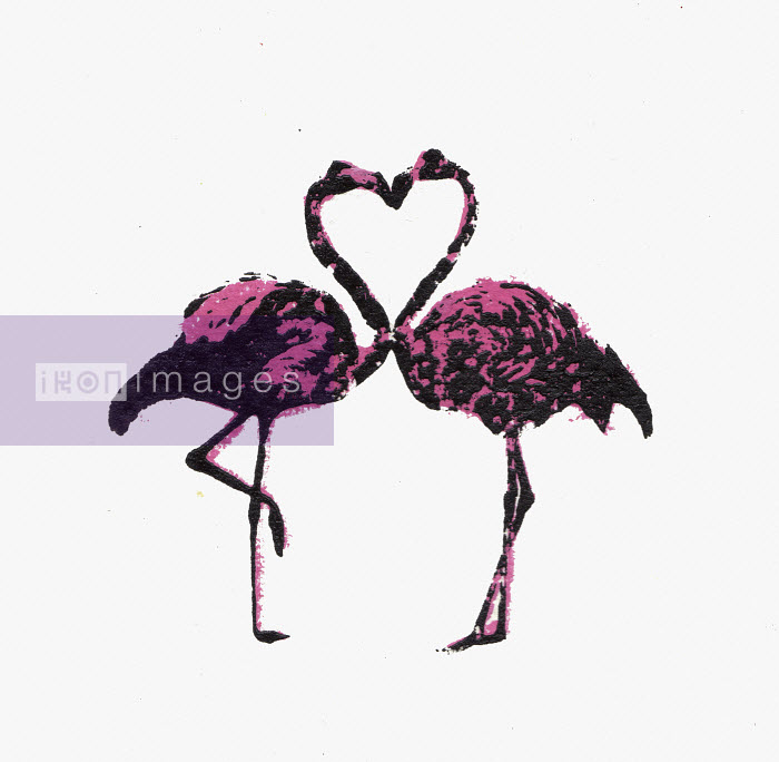 Katie Edwards - Two flamingos face to face with necks forming heart shape