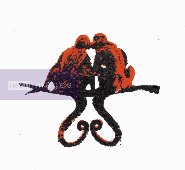Two monkeys kissing on branch with tails forming heart shape - Katie Edwards