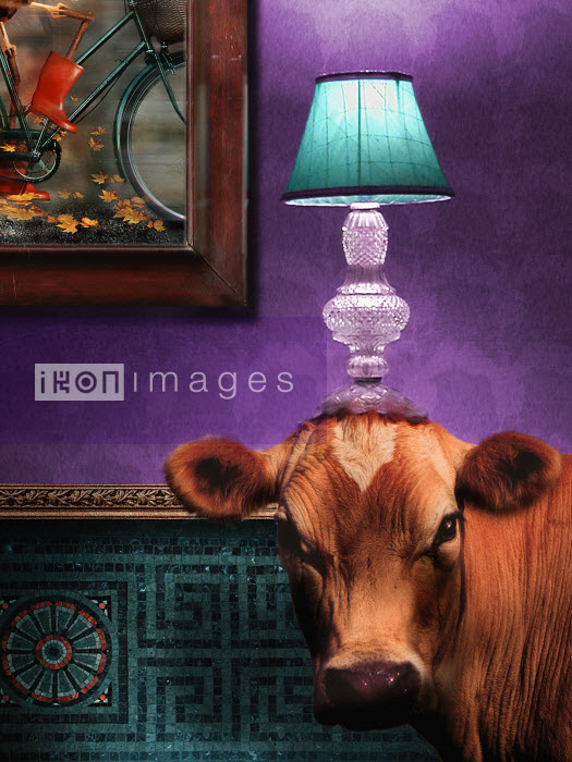Cow in living room with lamp on head - Cow in living room with lamp on head - Barry Downard