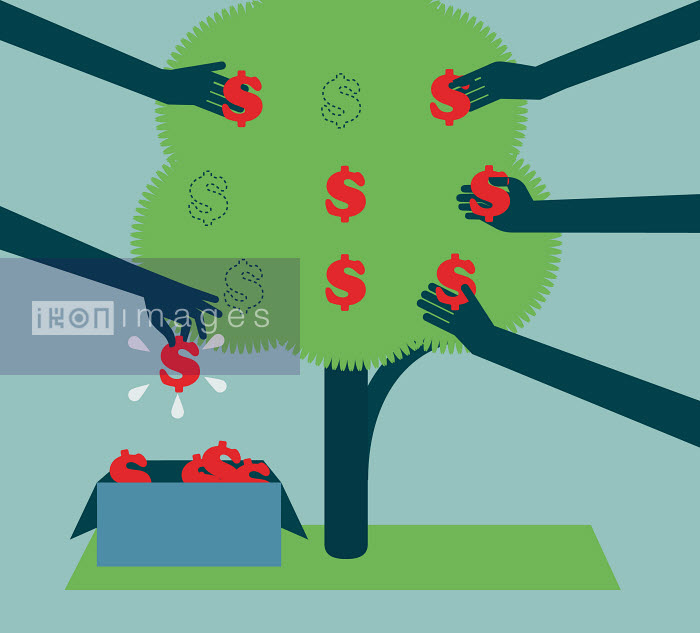 Hands picking dollar signs from money tree - Hands picking dollar signs from money tree - Andrew Baker