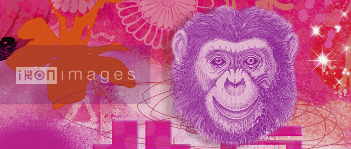 Montage of the Chinese year of the Monkey - Montage of the Chinese year of the Monkey - Matt Herring