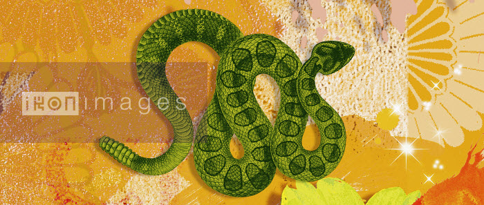 Montage of the Chinese year of the Snake - Montage of the Chinese year of the Snake - Matt Herring