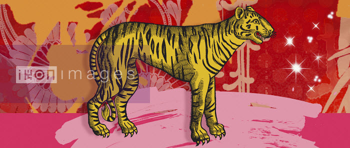 Montage of the Chinese year of the Tiger - Montage of the Chinese year of the Tiger - Matt Herring