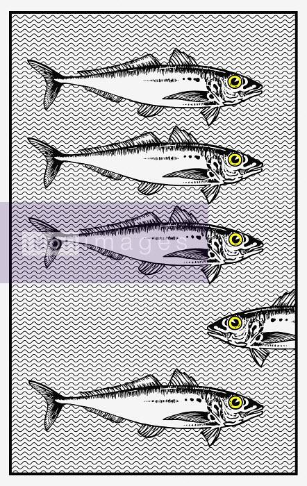 School of fish swimming one way, single fish swimming the other - School of fish swimming one way, single fish swimming the other - Cath Riley